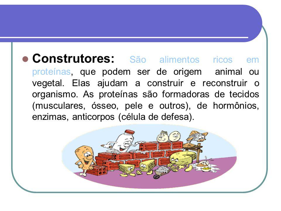 Construtores: São alimentos ricos em proteínas, que podem ser de origem animal ou vegetal.