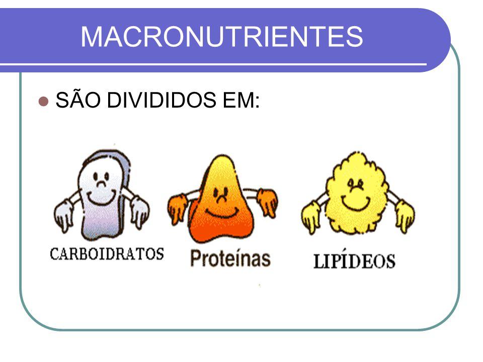 MACRONUTRIENTES SÃO DIVIDIDOS EM: