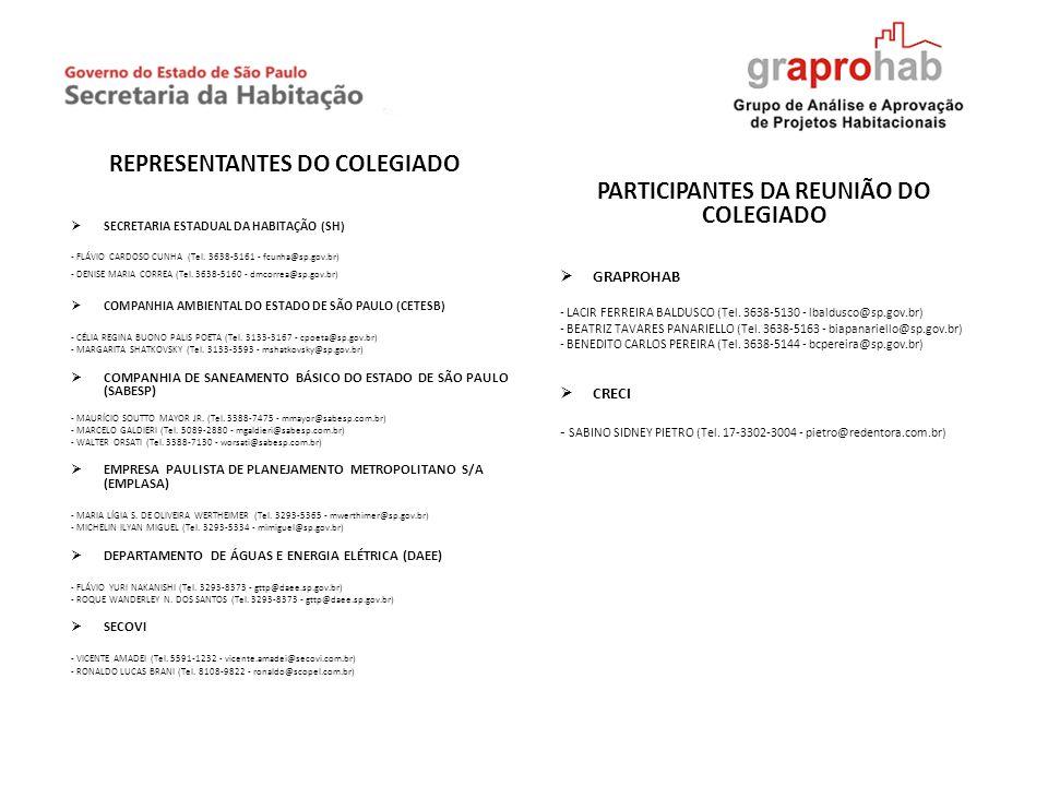 REPRESENTANTES DO COLEGIADO PARTICIPANTES DA REUNIÃO DO COLEGIADO