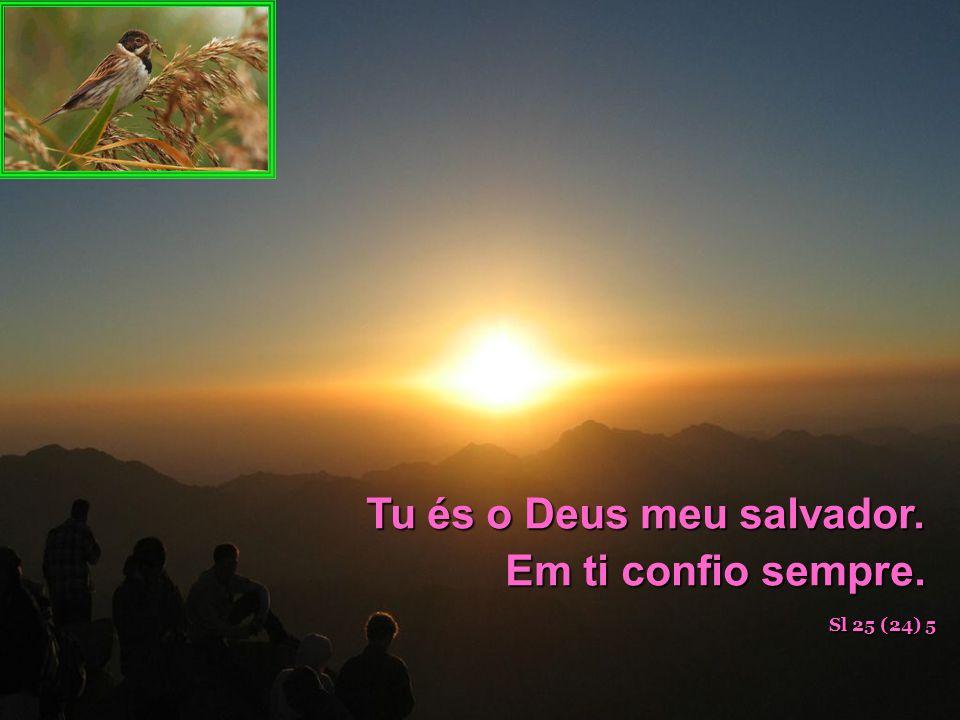 Tu és o Deus meu salvador. Em ti confio sempre.