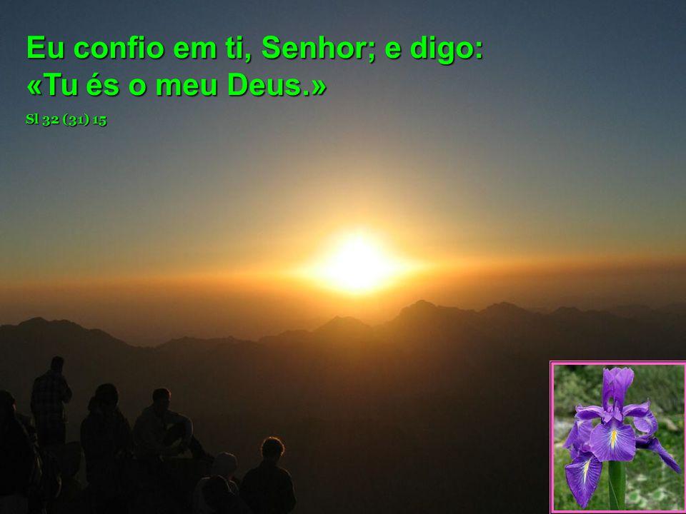 Eu confio em ti, Senhor; e digo: «Tu és o meu Deus.»