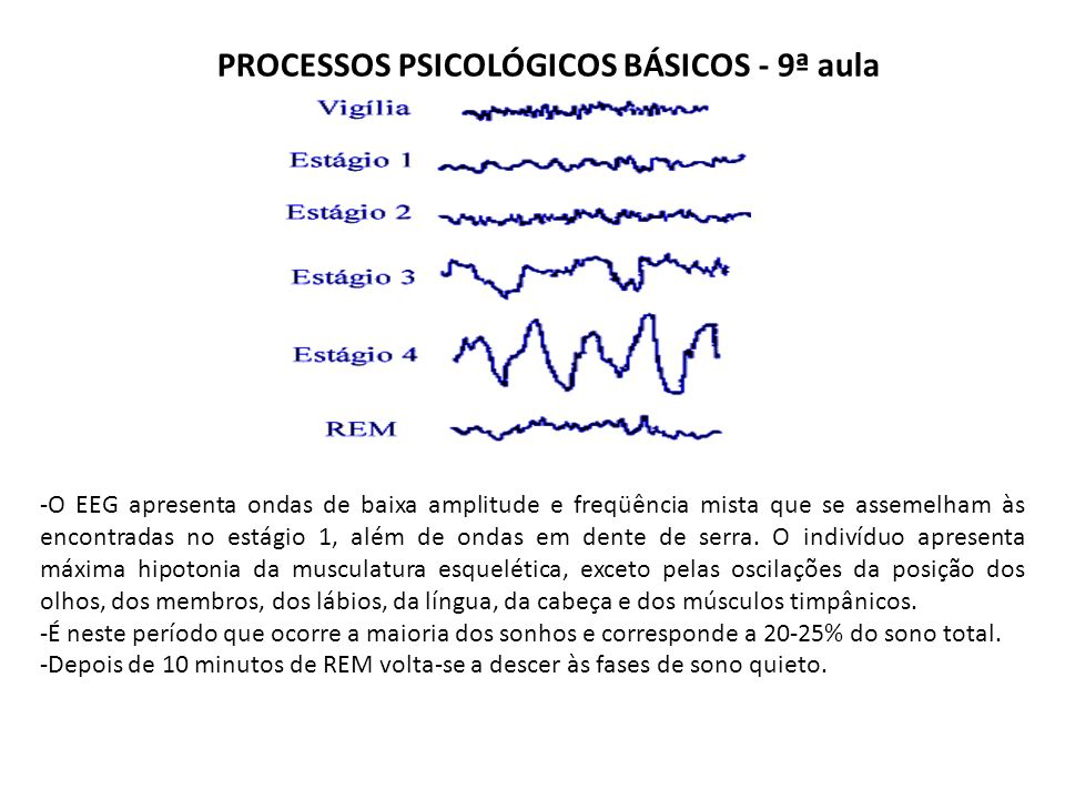 PROCESSOS PSICOLÓGICOS BÁSICOS - 9ª aula