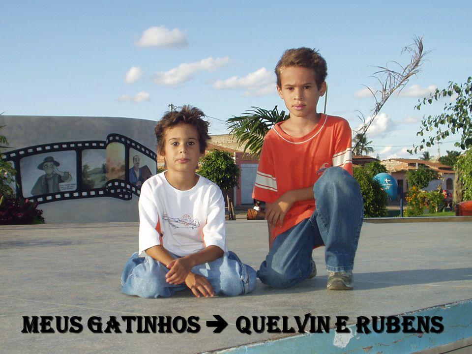MEUS GATINHOS  QUELVIN E RUBENS