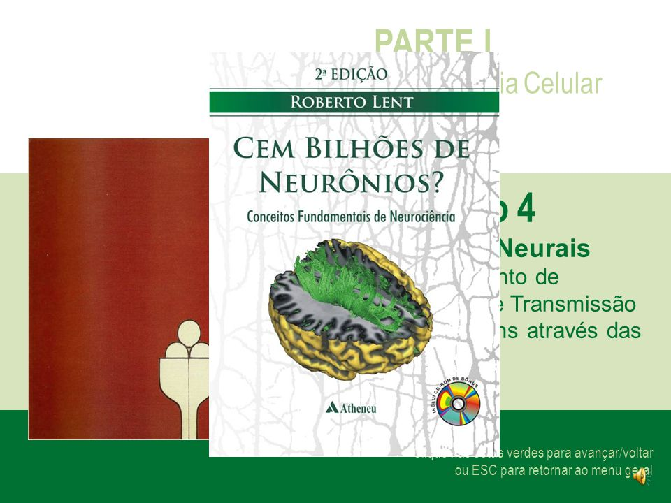 Capítulo 4 PARTE I Neurociência Celular Os Chips Neurais