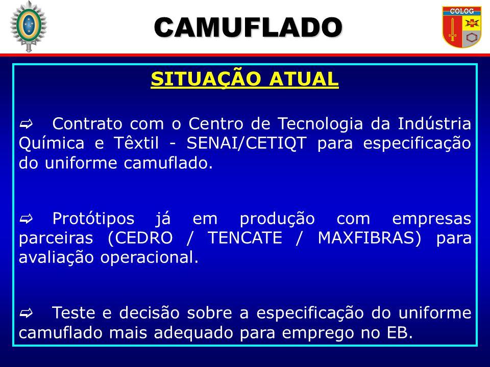CAMUFLADO SITUAÇÃO ATUAL