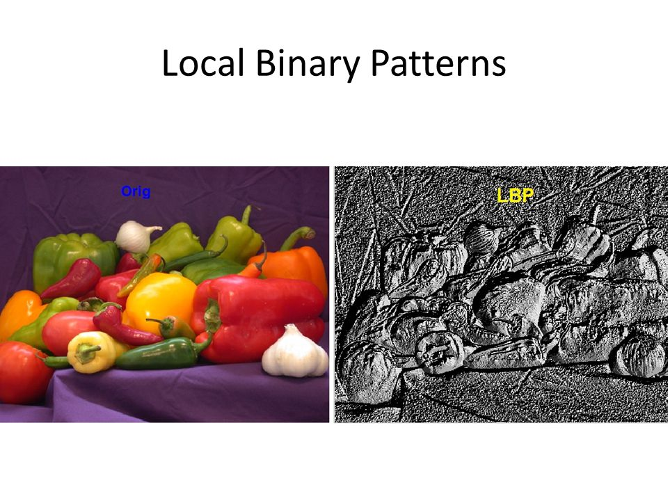 Local Binary Patterns