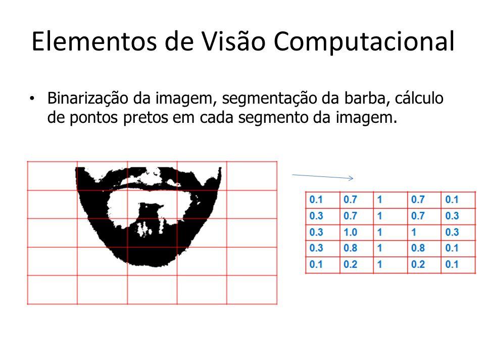 Elementos de Visão Computacional