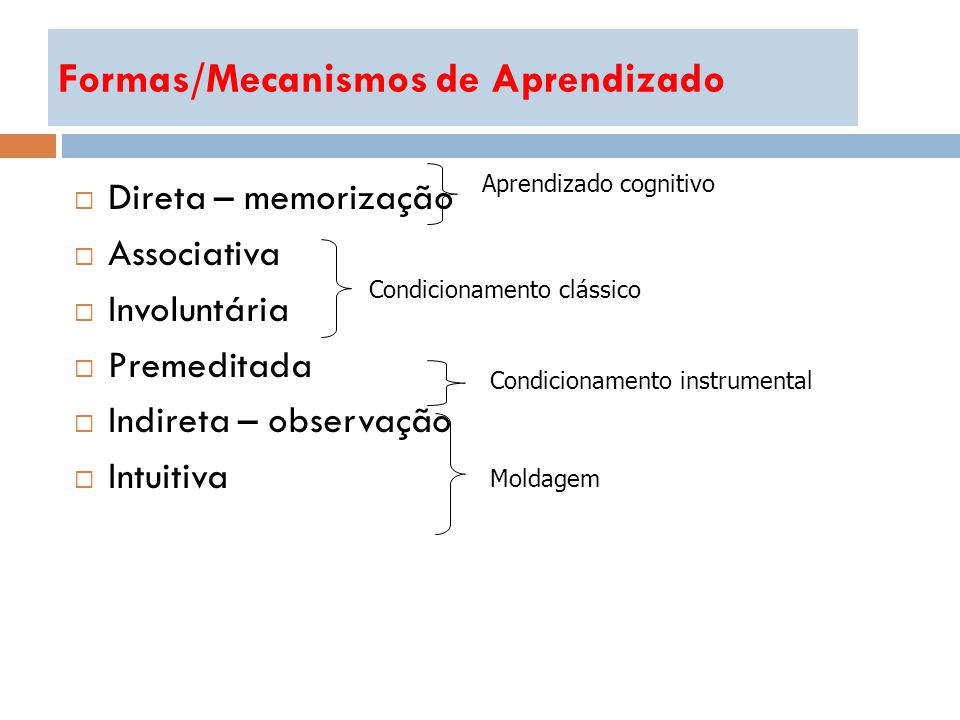 Formas/Mecanismos de Aprendizado
