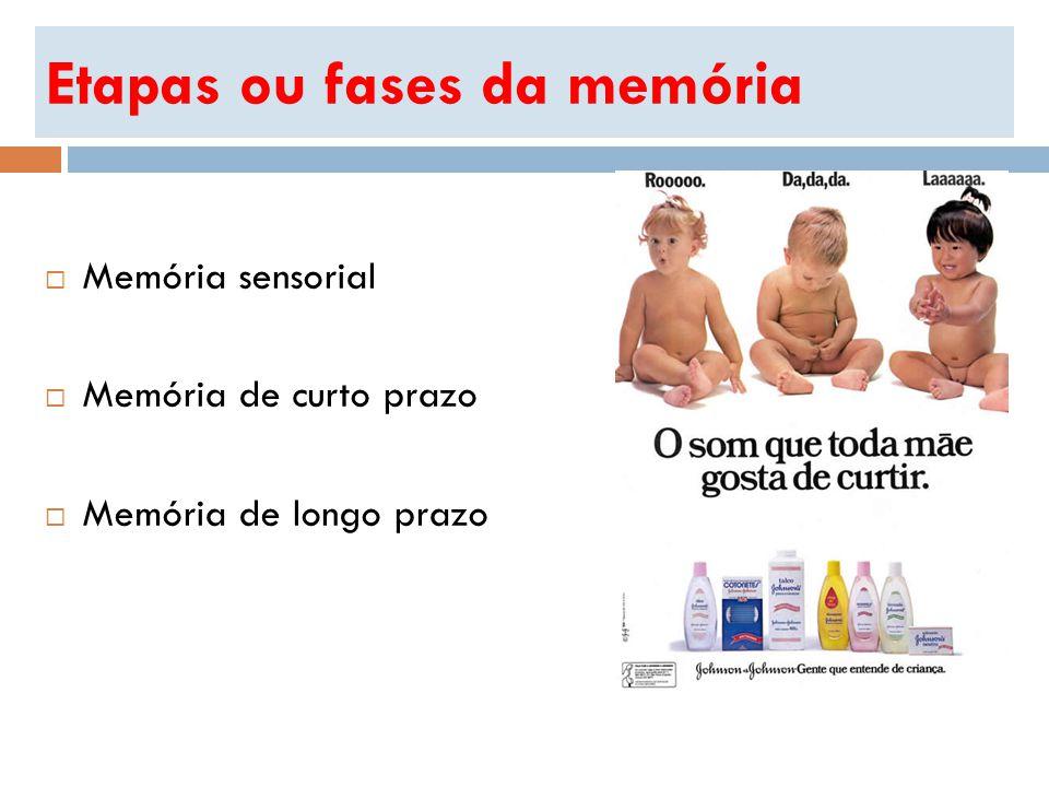 Etapas ou fases da memória