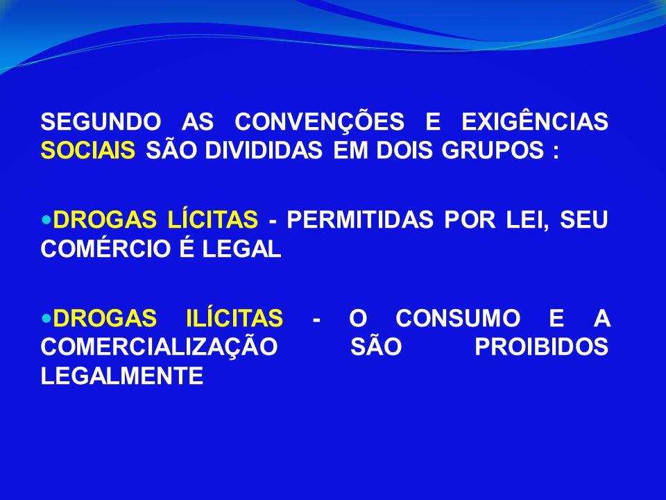 SEGUNDO AS CONVENÇÕES E EXIGÊNCIAS SOCIAIS SÃO DIVIDIDAS EM DOIS GRUPOS :