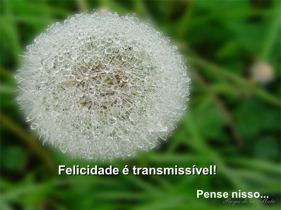 Felicidade é transmissível!
