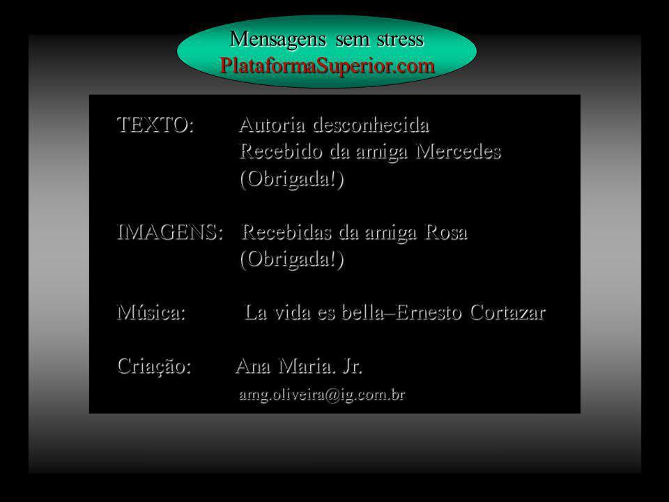 Mensagens sem stress PlataformaSuperior.com. TEXTO: Autoria desconhecida. Recebido da amiga Mercedes.