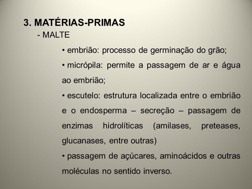 3. Matérias-primas MALTE embrião: processo de germinação do grão;