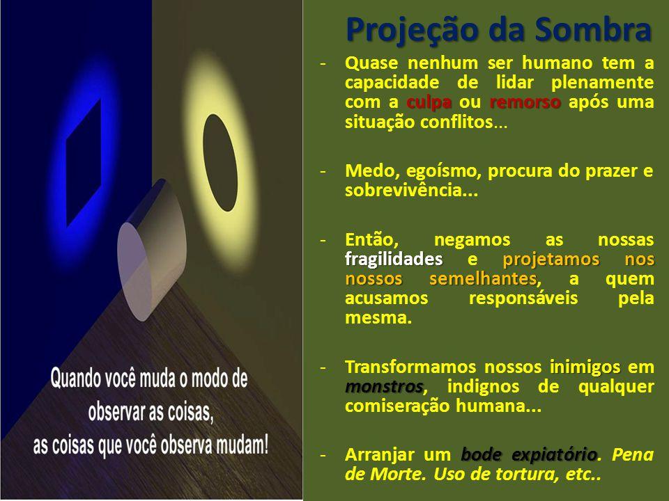 Projeção da Sombra Quase nenhum ser humano tem a capacidade de lidar plenamente com a culpa ou remorso após uma situação conflitos...
