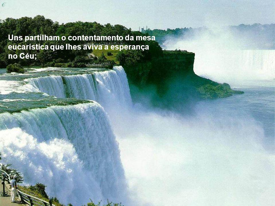 Uns partilham o contentamento da mesa eucarística que Ihes aviva a esperança no Céu;