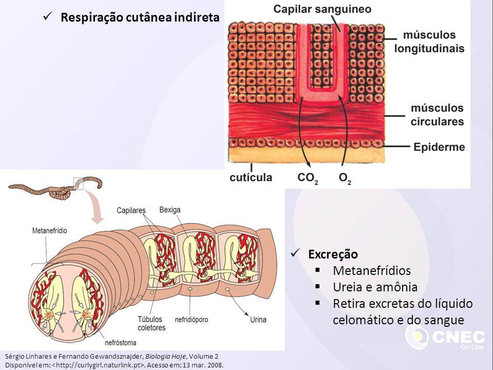 Respiração cutânea indireta