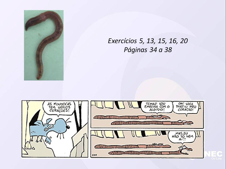 Exercícios 5, 13, 15, 16, 20 Páginas 34 a 38