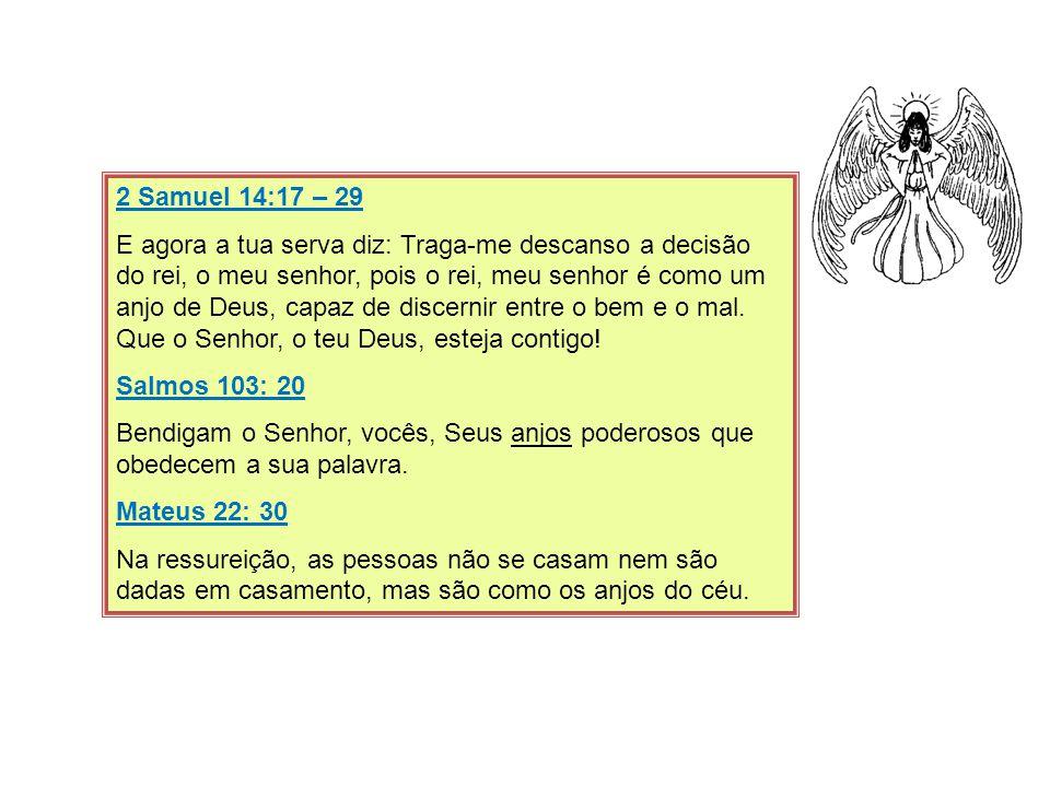 2 Samuel 14:17 – 29