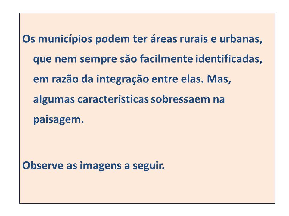 Os municípios podem ter áreas rurais e urbanas, que nem sempre são facilmente identificadas, em razão da integração entre elas.