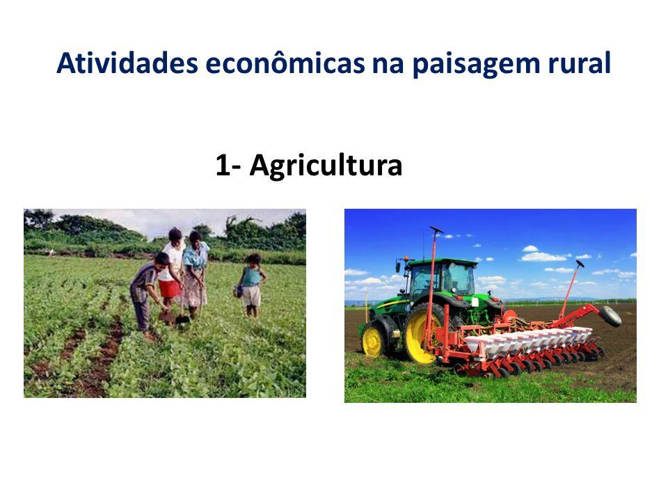 Atividades econômicas na paisagem rural