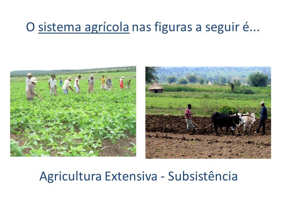 O sistema agrícola nas figuras a seguir é...