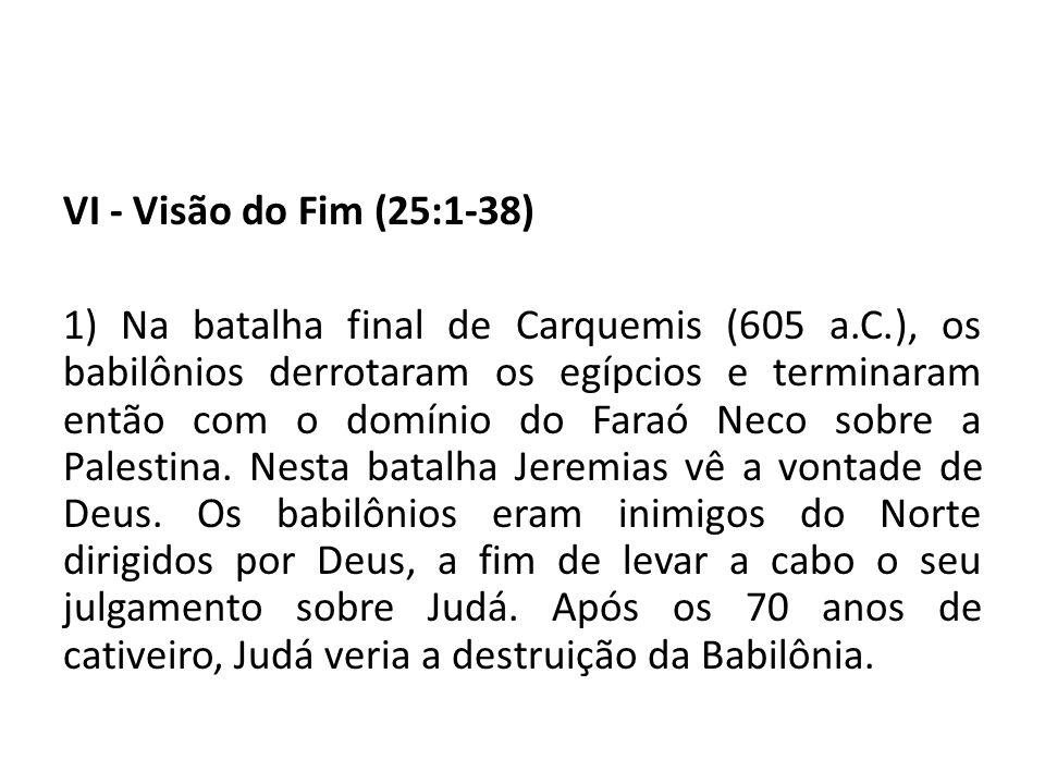 VI - Visão do Fim (25:1-38)