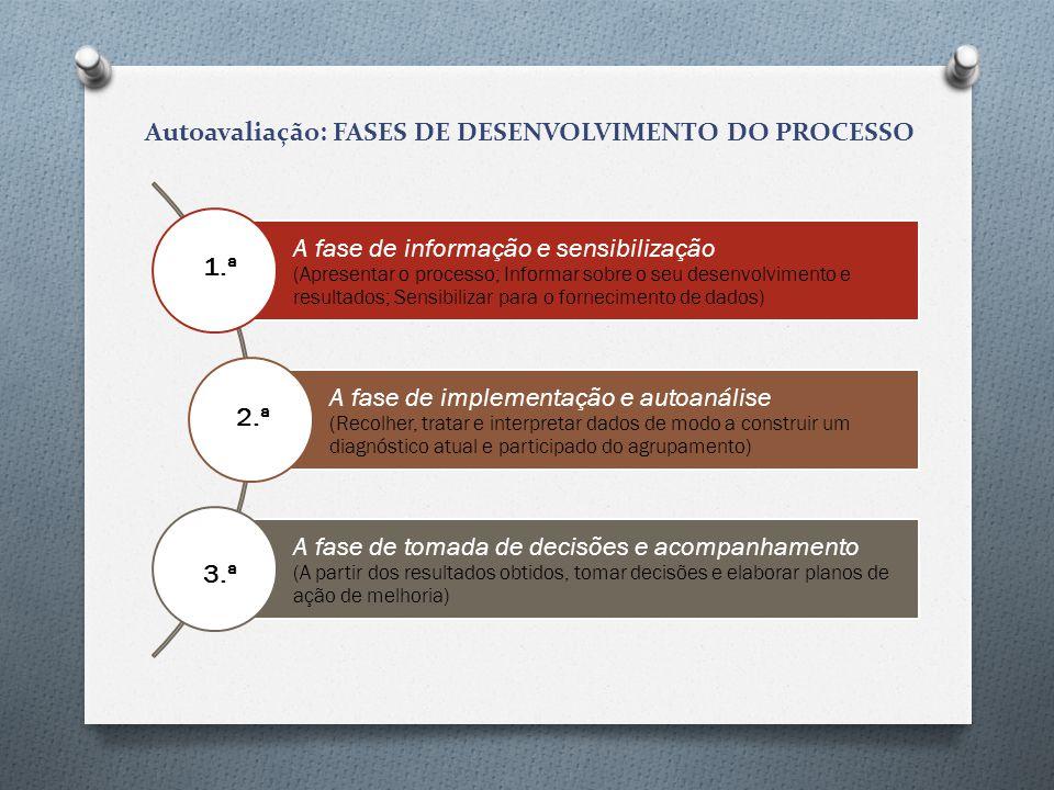 Autoavaliação: FASES DE DESENVOLVIMENTO DO PROCESSO