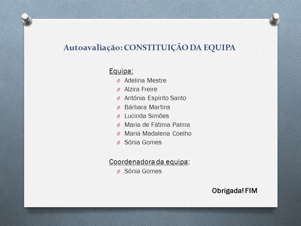 Autoavaliação: CONSTITUIÇÃO DA EQUIPA