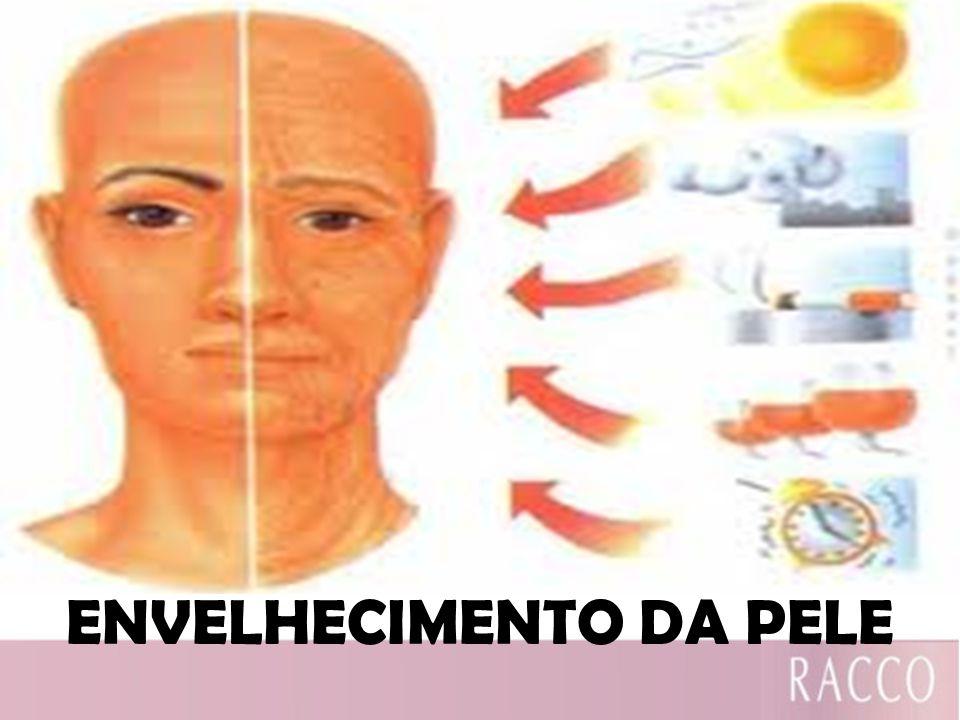 ENVELHECIMENTO DA PELE