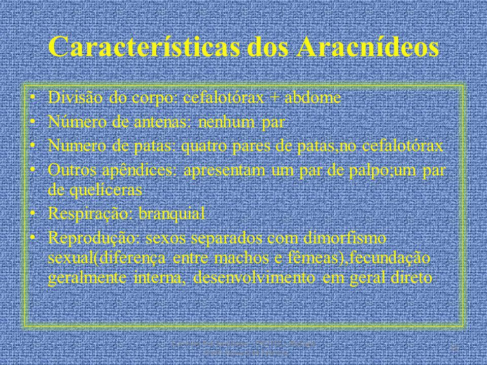 Características dos Aracnídeos