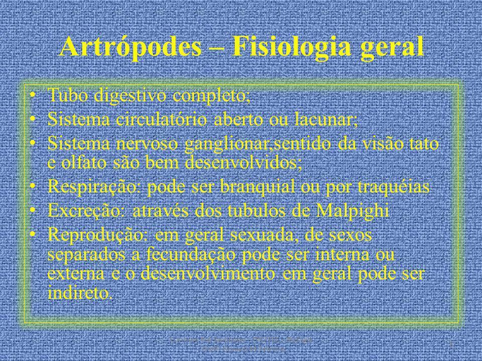 Artrópodes – Fisiologia geral