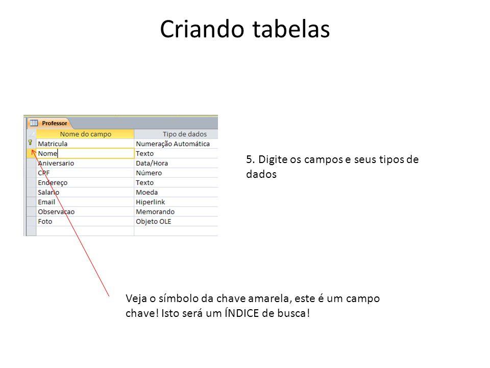 Criando tabelas 5. Digite os campos e seus tipos de dados