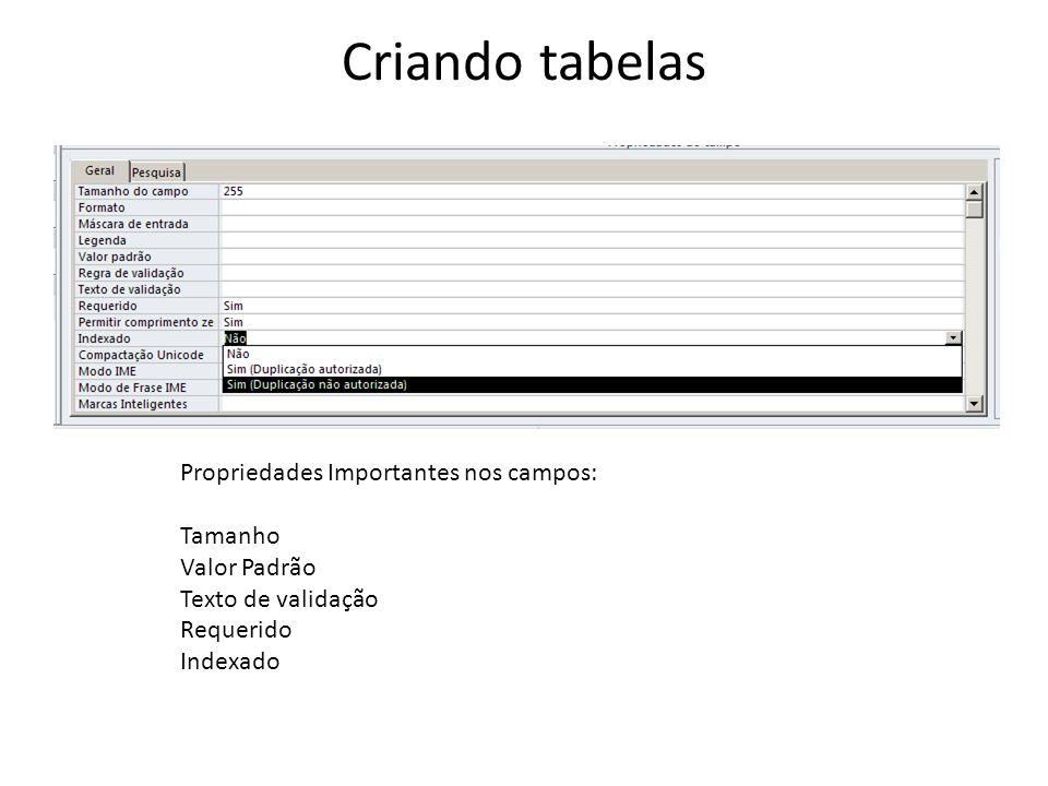 Criando tabelas Propriedades Importantes nos campos: Tamanho