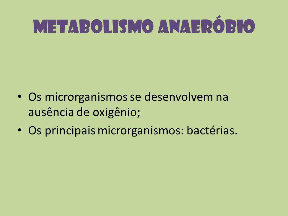 Metabolismo Anaeróbio