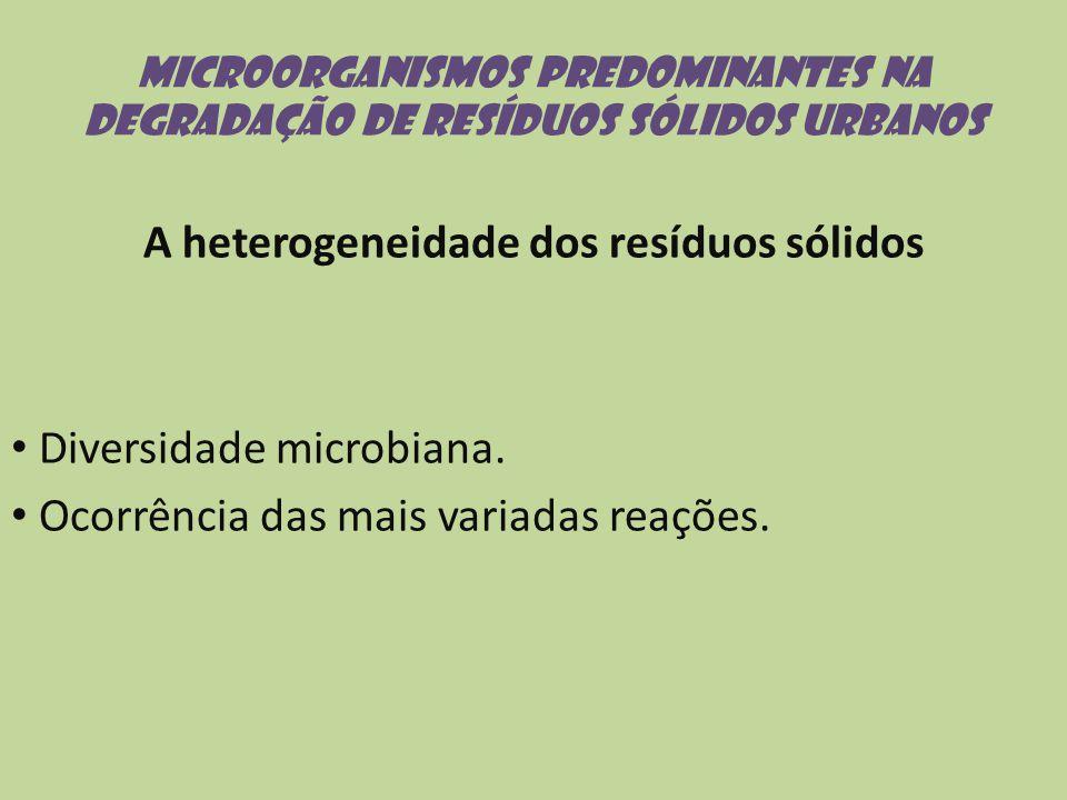 A heterogeneidade dos resíduos sólidos