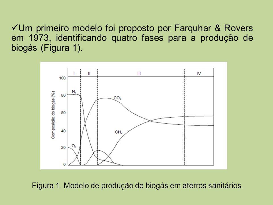 Figura 1. Modelo de produção de biogás em aterros sanitários.