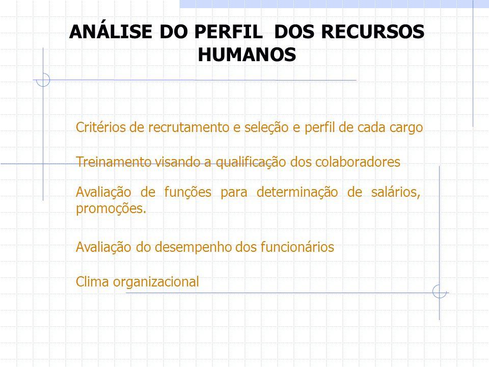 ANÁLISE DO PERFIL DOS RECURSOS HUMANOS
