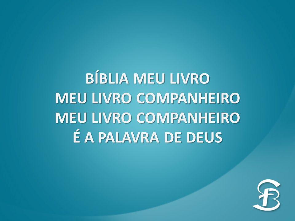 BÍBLIA MEU LIVRO MEU LIVRO COMPANHEIRO É A PALAVRA DE DEUS