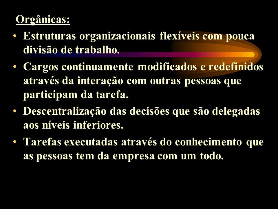 Orgânicas: Estruturas organizacionais flexíveis com pouca divisão de trabalho.
