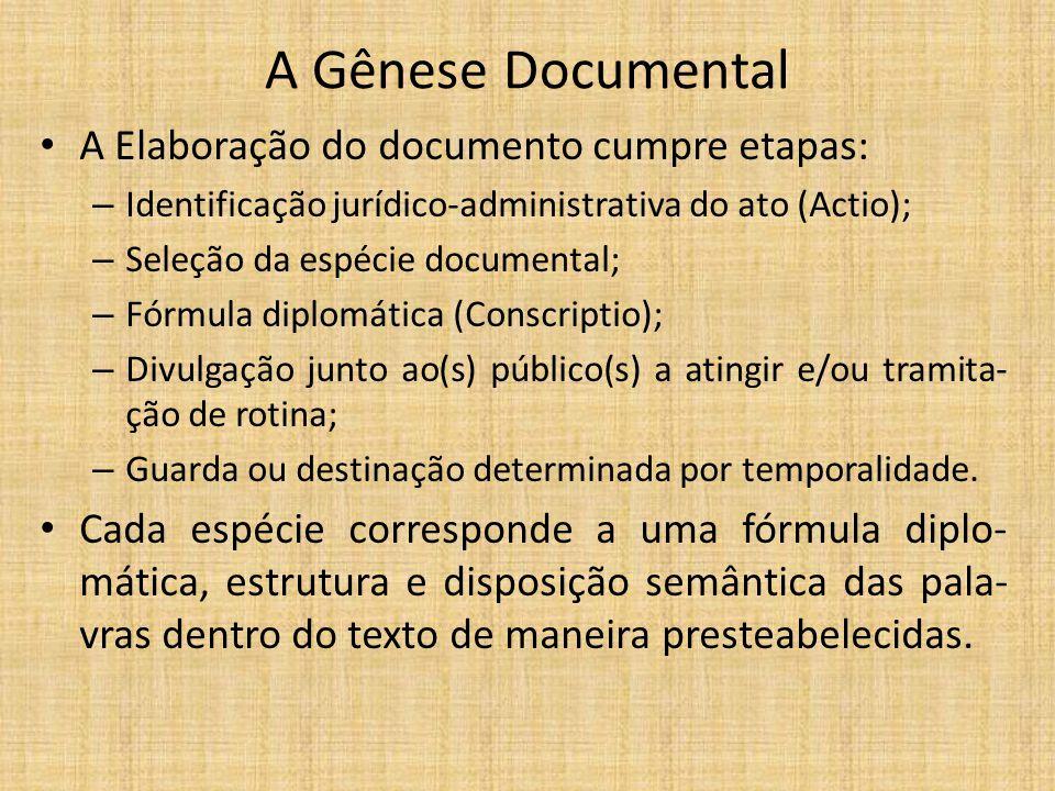 A Gênese Documental A Elaboração do documento cumpre etapas: