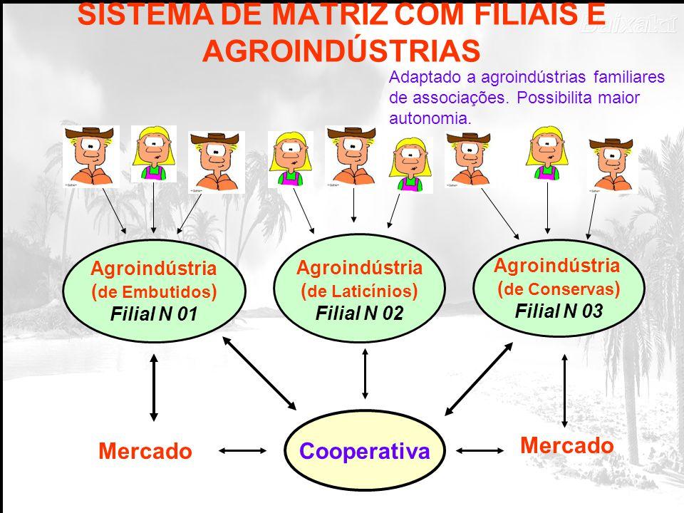 SISTEMA DE MATRIZ COM FILIAIS E AGROINDÚSTRIAS