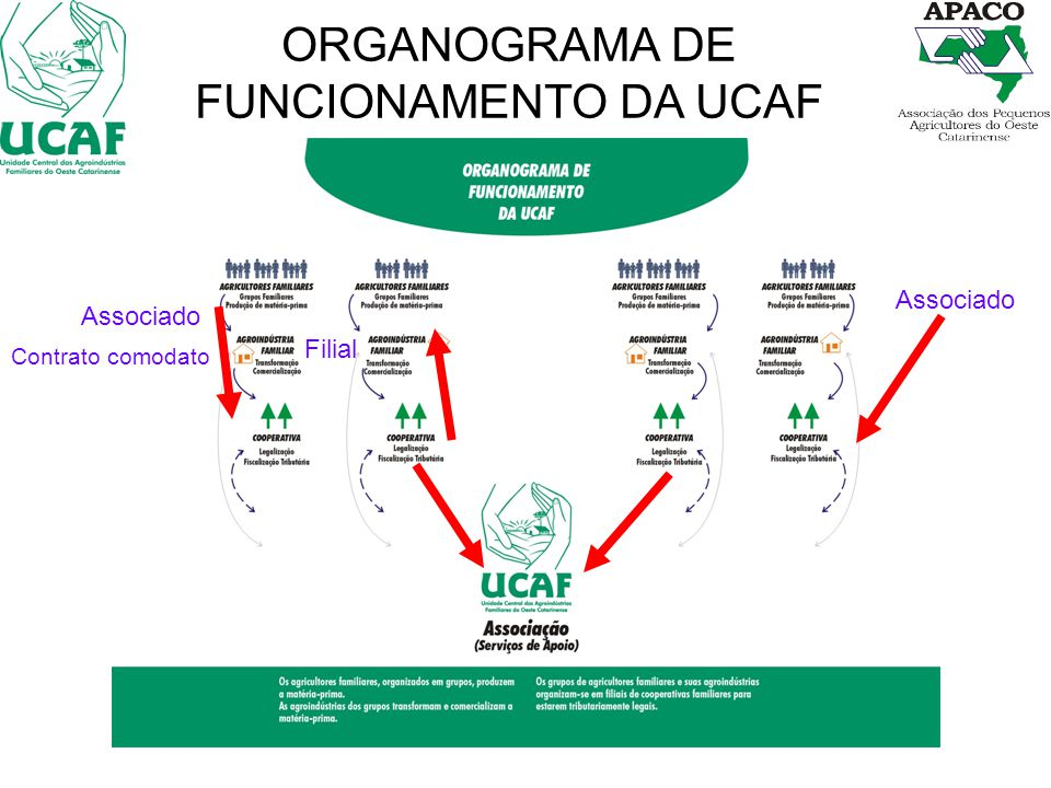 ORGANOGRAMA DE FUNCIONAMENTO DA UCAF