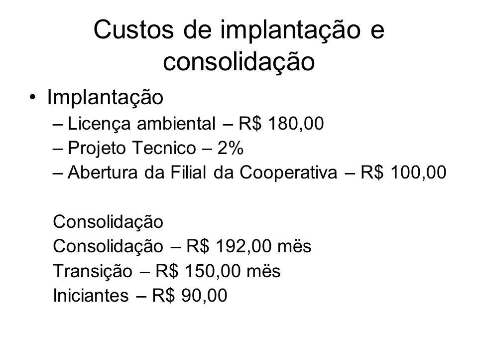 Custos de implantação e consolidação