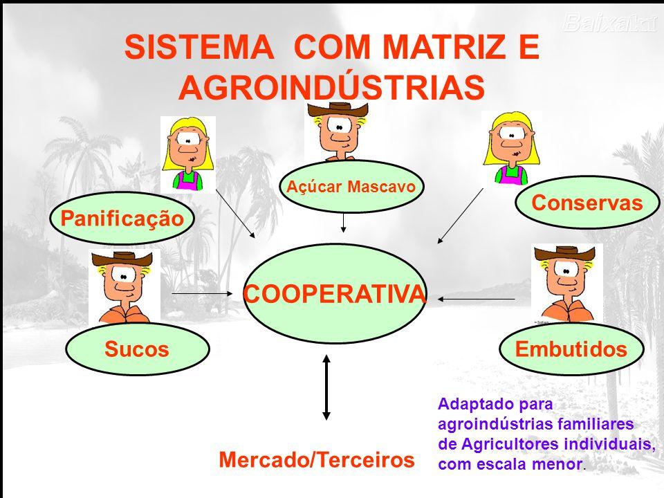 SISTEMA COM MATRIZ E AGROINDÚSTRIAS