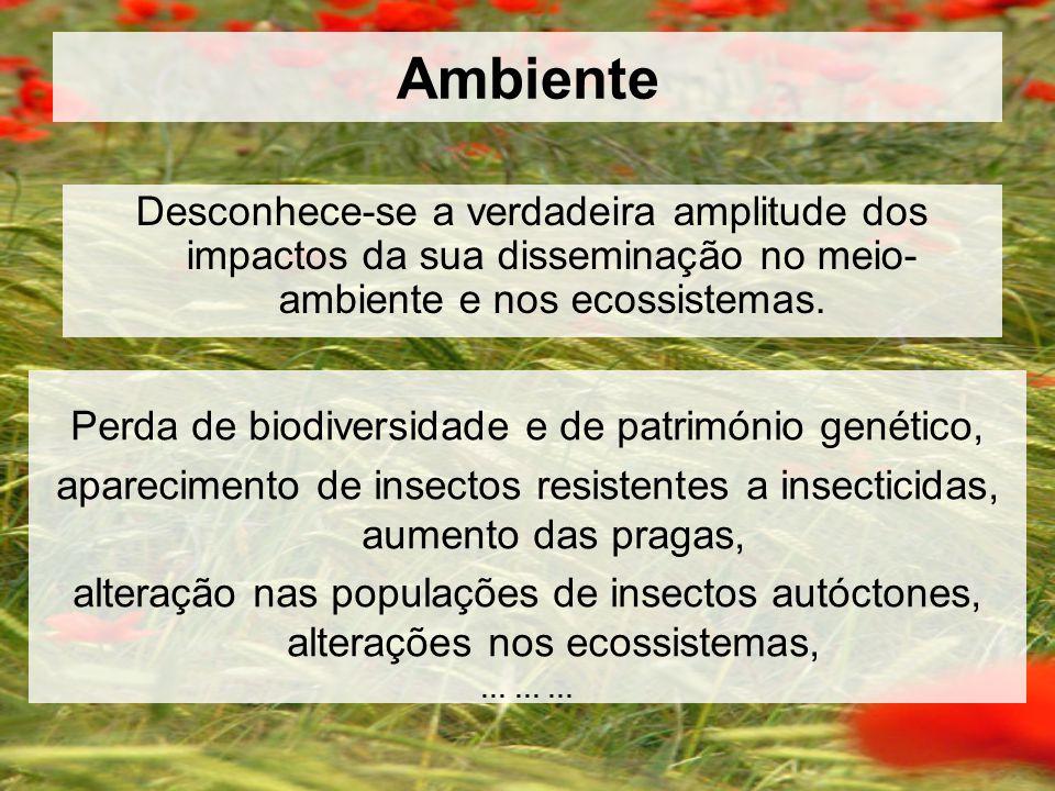 Perda de biodiversidade e de património genético,