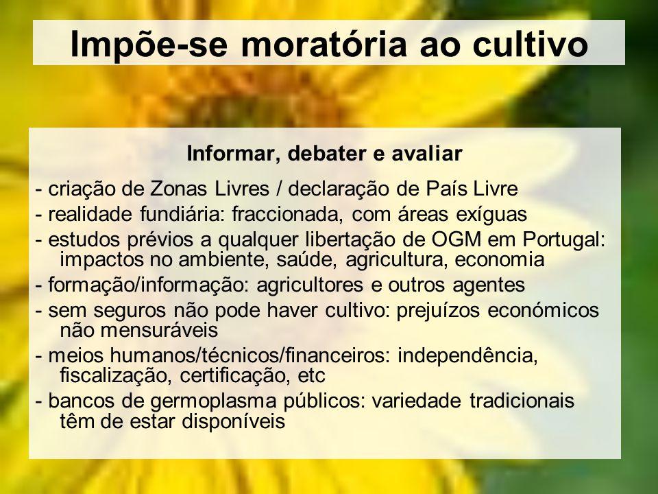 Impõe-se moratória ao cultivo