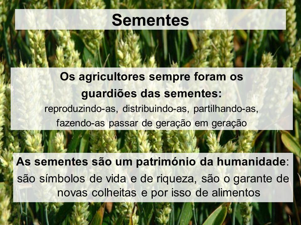 Os agricultores sempre foram os guardiões das sementes:
