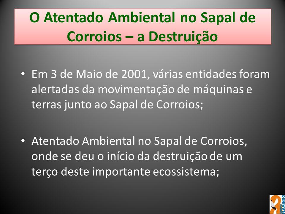 O Atentado Ambiental no Sapal de Corroios – a Destruição