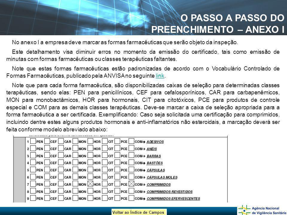 O PASSO A PASSO DO PREENCHIMENTO – ANEXO I
