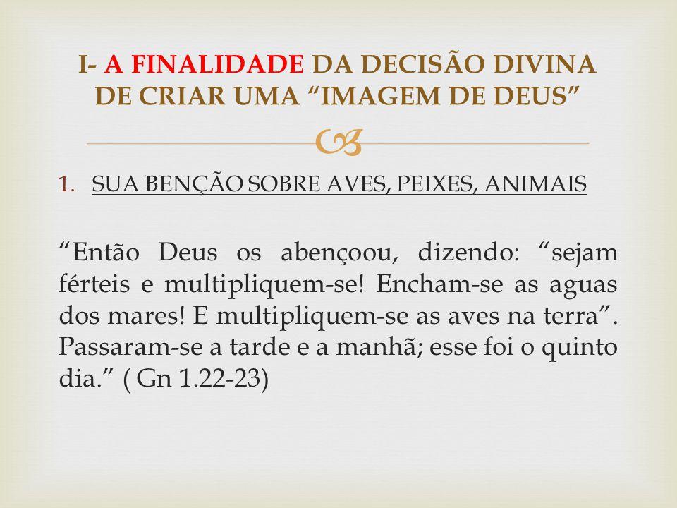 I- A FINALIDADE DA DECISÃO DIVINA DE CRIAR UMA IMAGEM DE DEUS